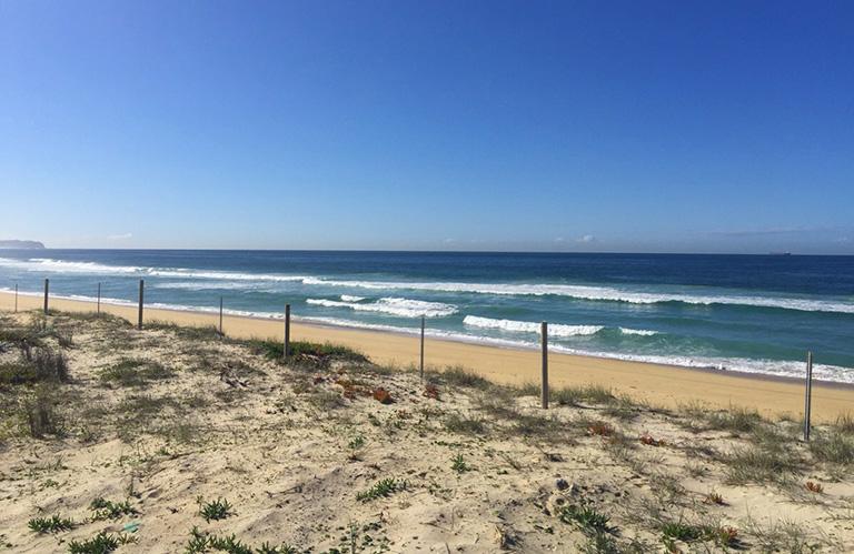 波の音が聞こえてきそうなこの景色。地元ゴールドコーストのビーチに来てるの?って感じ